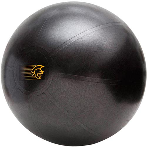 Bola Suiça 65Cm Pretorian Performance Fit Ball Training Anti-Burst