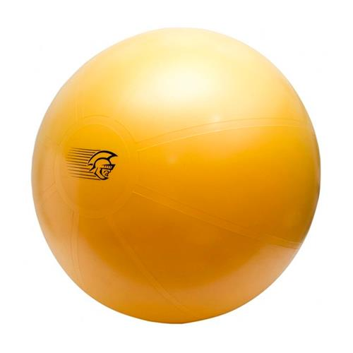 Bola Suiça 75Cm Pretorian Performance Fit Ball Training Anti-Burst