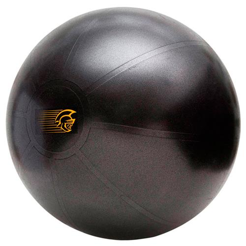 Bola Suiça 75Cm Pretorian Performance Fit Ball Pro