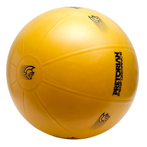 Bola Suiça 55Cm Pretorian Performance Fit Ball Pro
