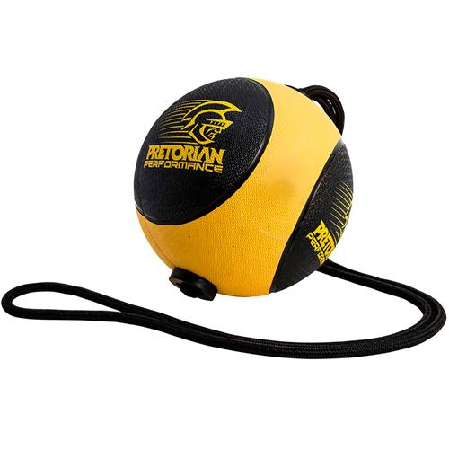 Medicine Ball Com Corda 4Kg Pretorian Performance