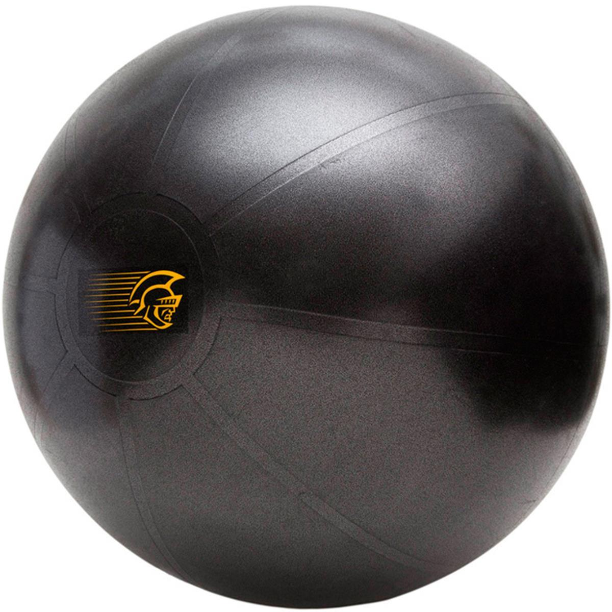 8b128c384e Bola Suiça 65Cm Pretorian Performance Fit Ball Training Anti-Burst - Pilates  E Rpg - ShopFisio
