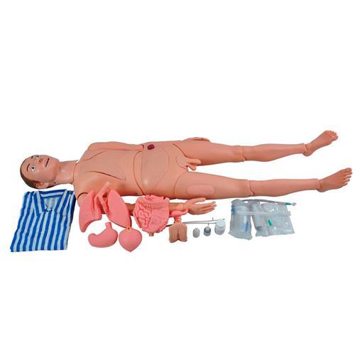 Manequim Adulto Bissexual Com Órgãos Internos Para Treino De Enfermagem - Sdorf Scientific