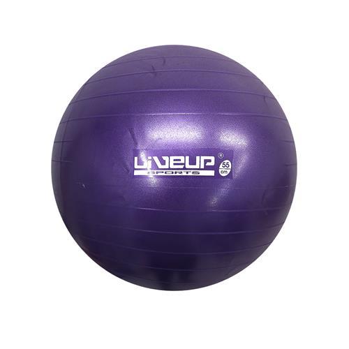 abcca1ba54 Bola Suíça 55Cm Premium Para Pilates - Liveup - Pilates E Rpg ...