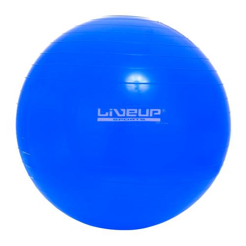 12090e1d10 Bola Suiça 65Cm Premium Liveup - Suporta Até 300Kg - Azul - Pilates ...